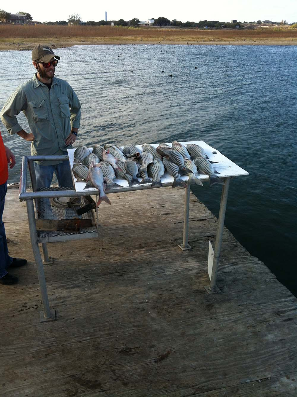 lake buchanan striper fishing guide inks lake fishing